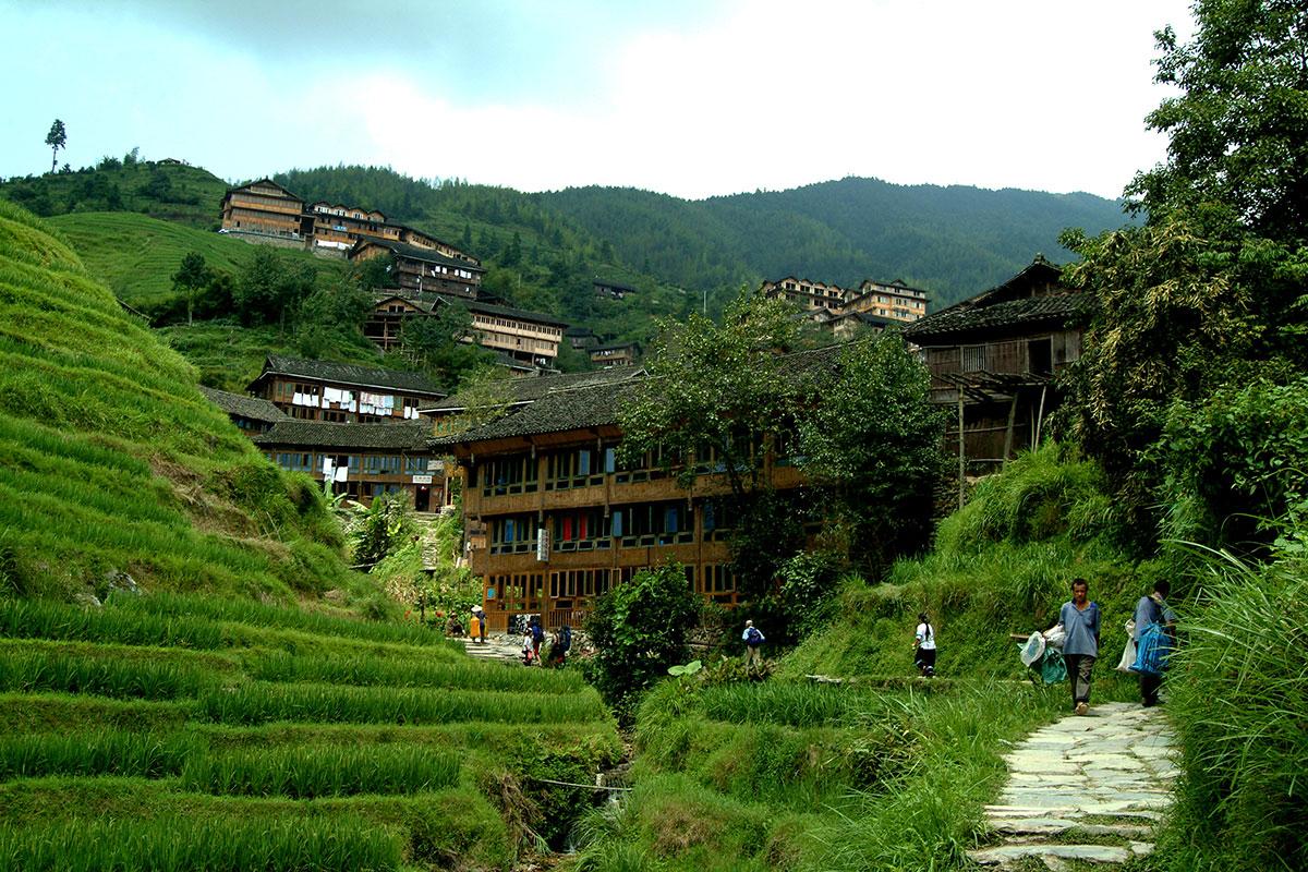 Longsheng Terrazas de arroz Espinazo del dragon